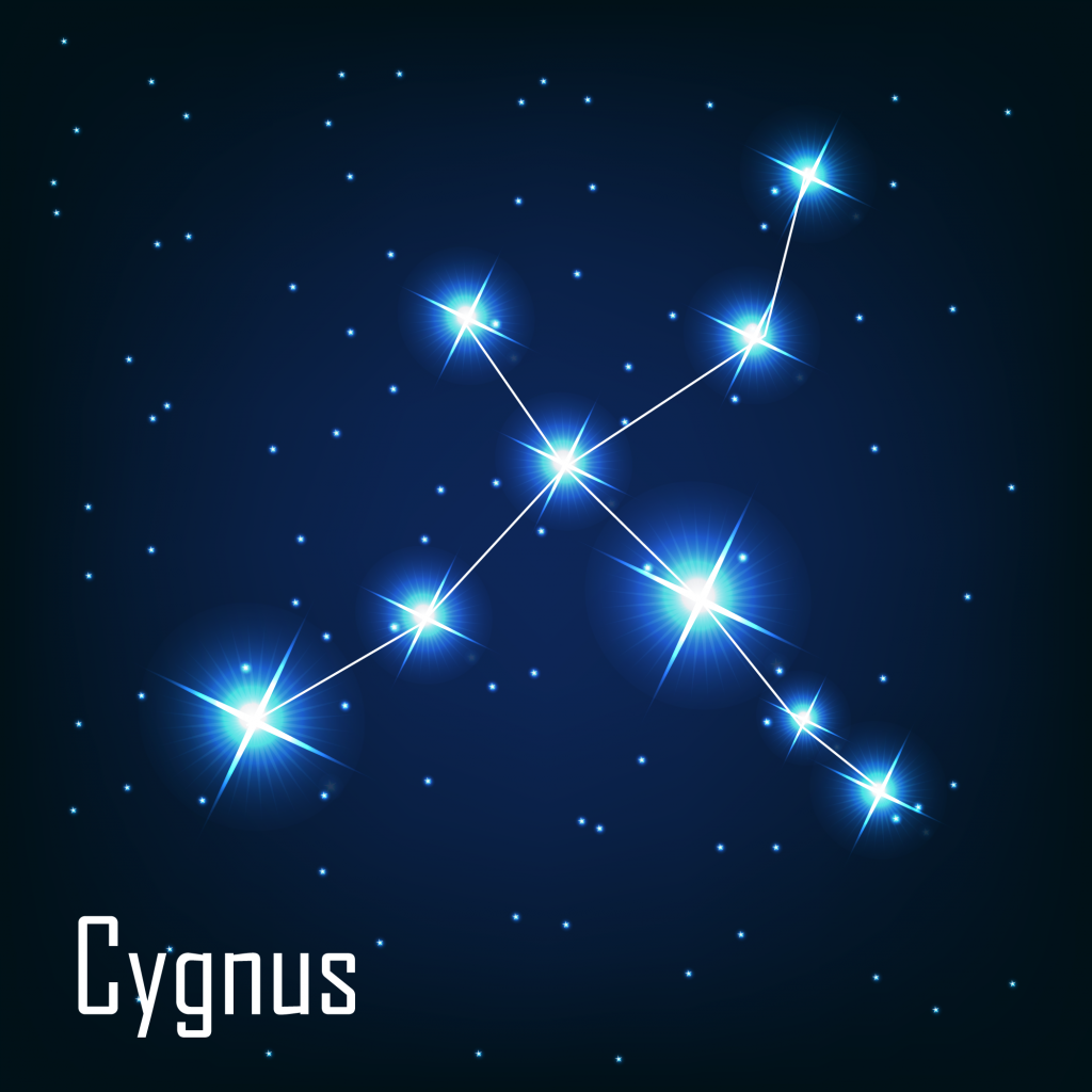 Cygnus - La constellation du Cygne